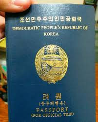 North-Korean-embassy-contact-pages-in-south-africa