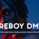 Biography of Fireboy DML & Net Worth